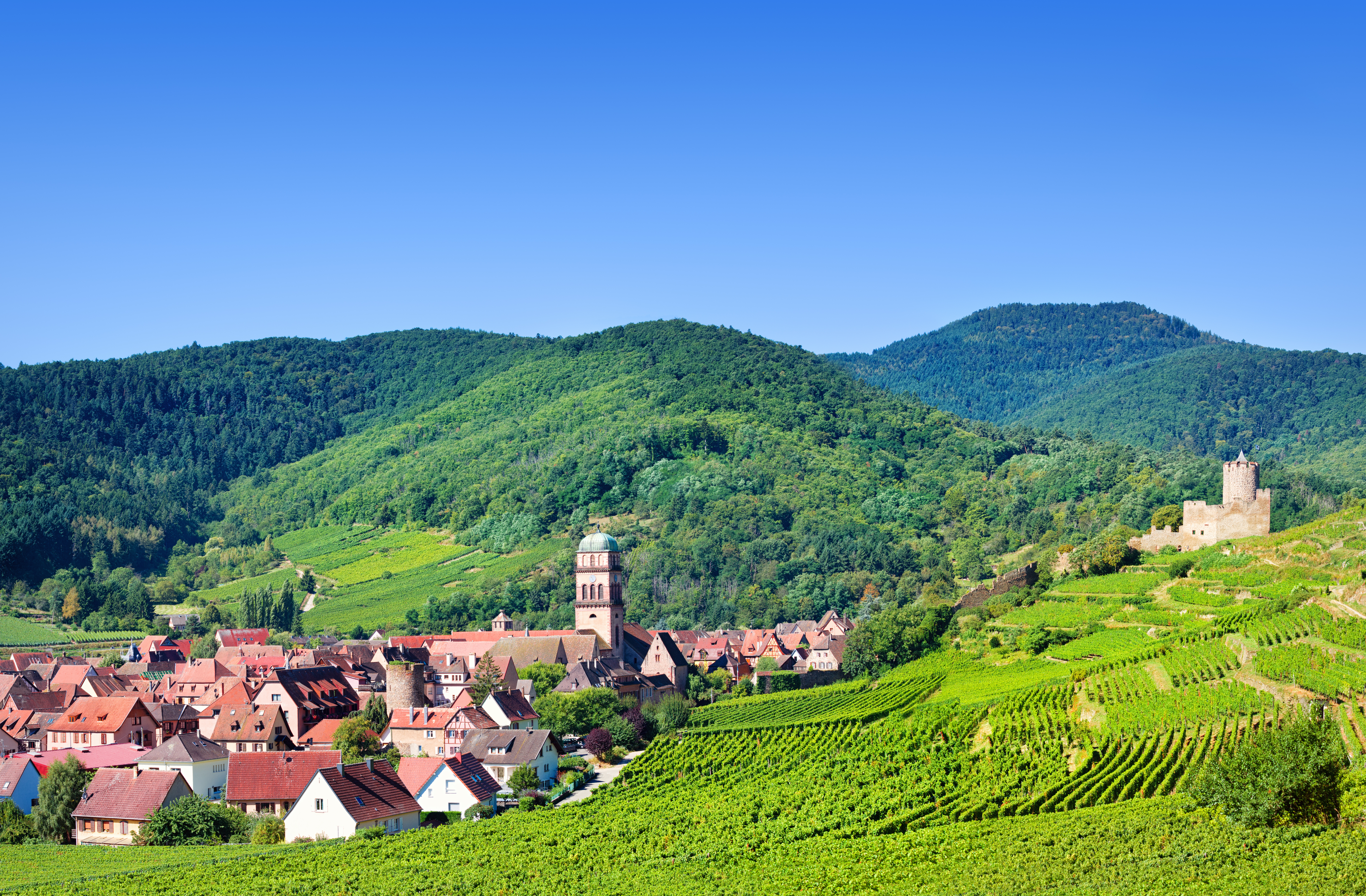 La route des vins d'Alsace 3