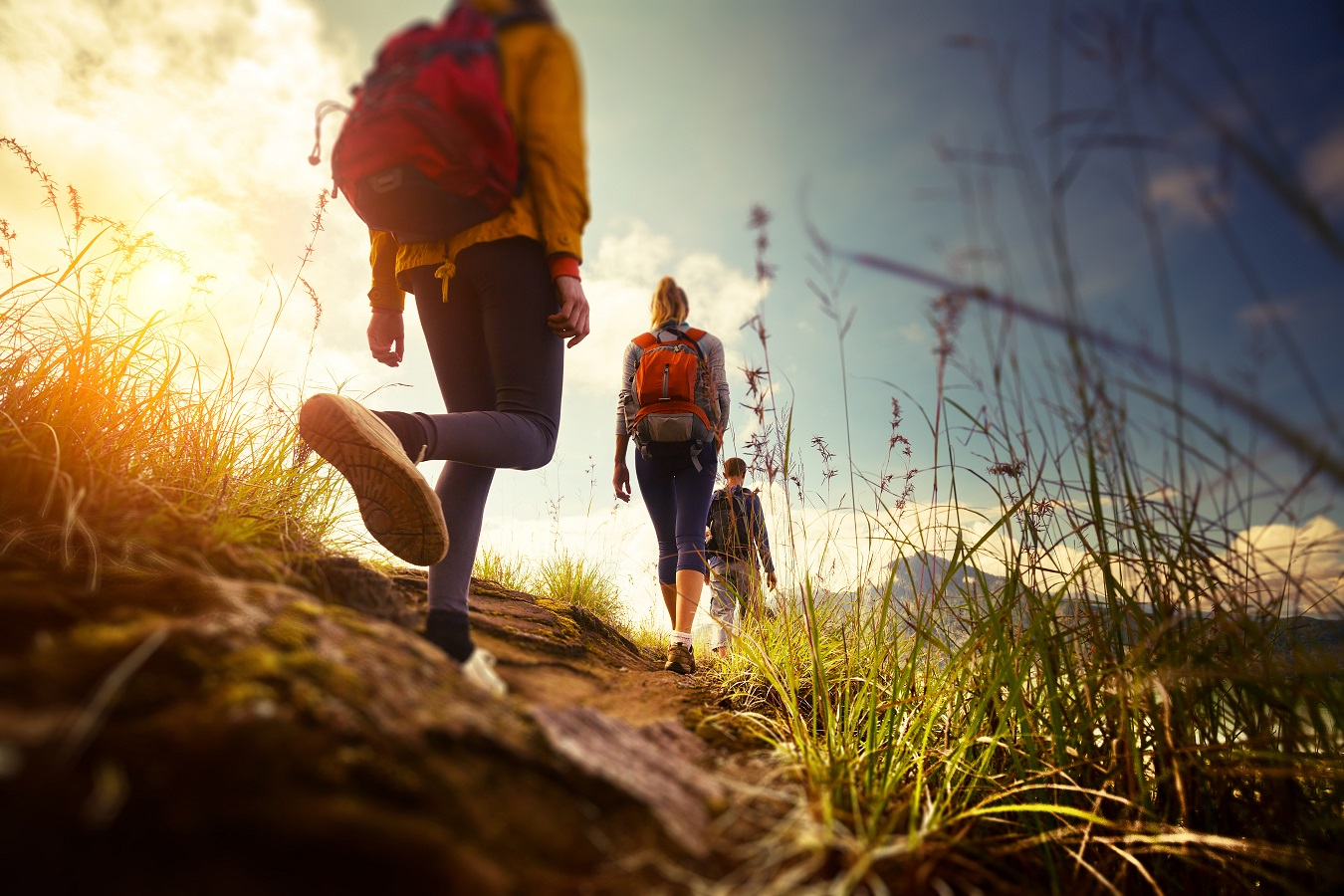 Partir en vacances dans les Vosges pendant l'été 1