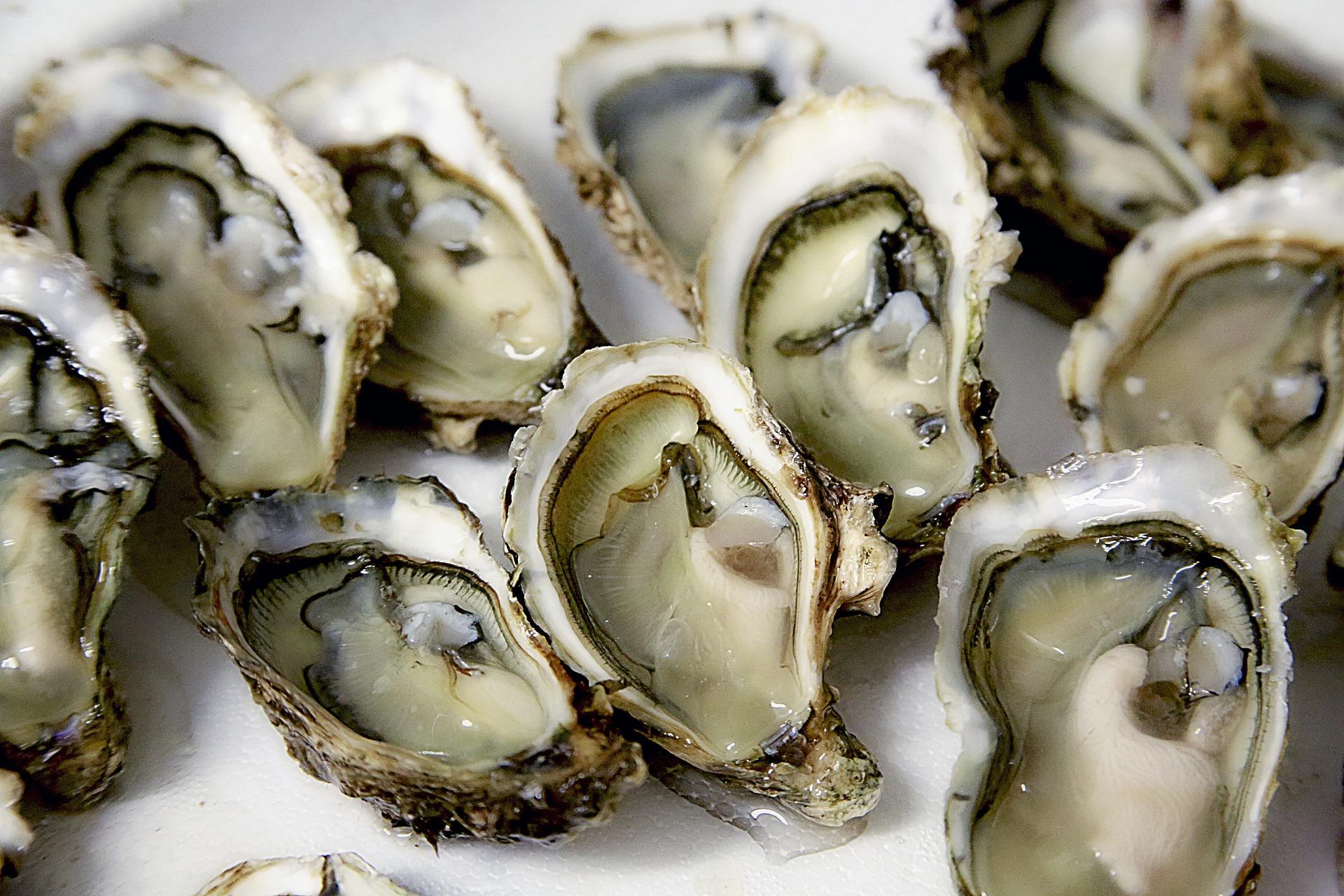 Comment bien choisir ses huîtres? 1