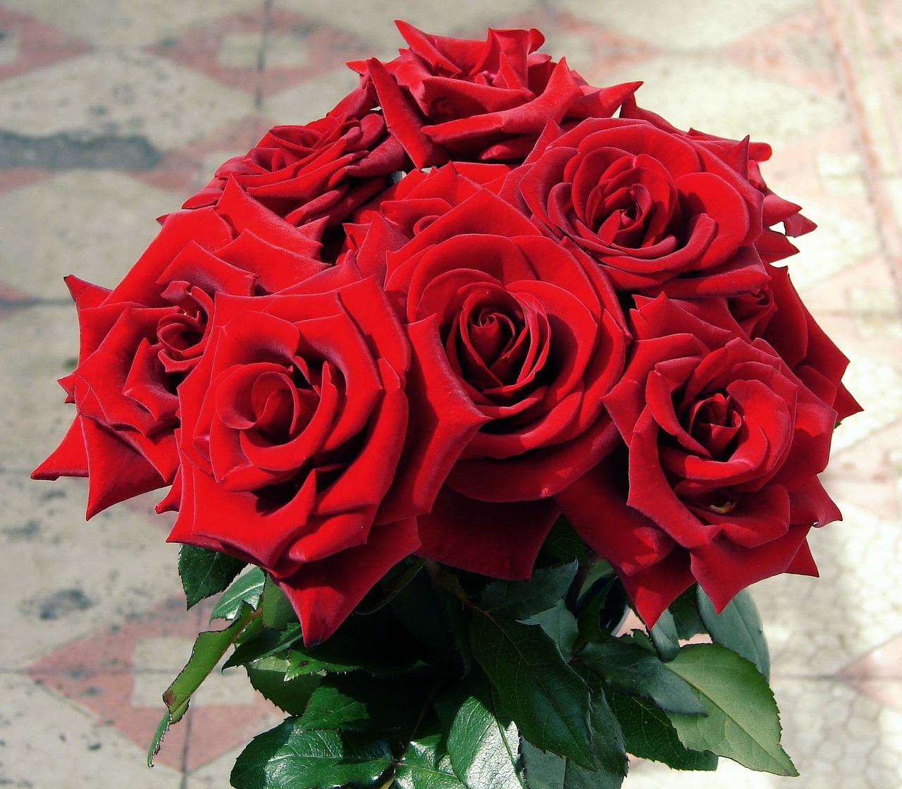 Comment composer votre bouquet de fleurs pour la Saint-Valentin ? 2