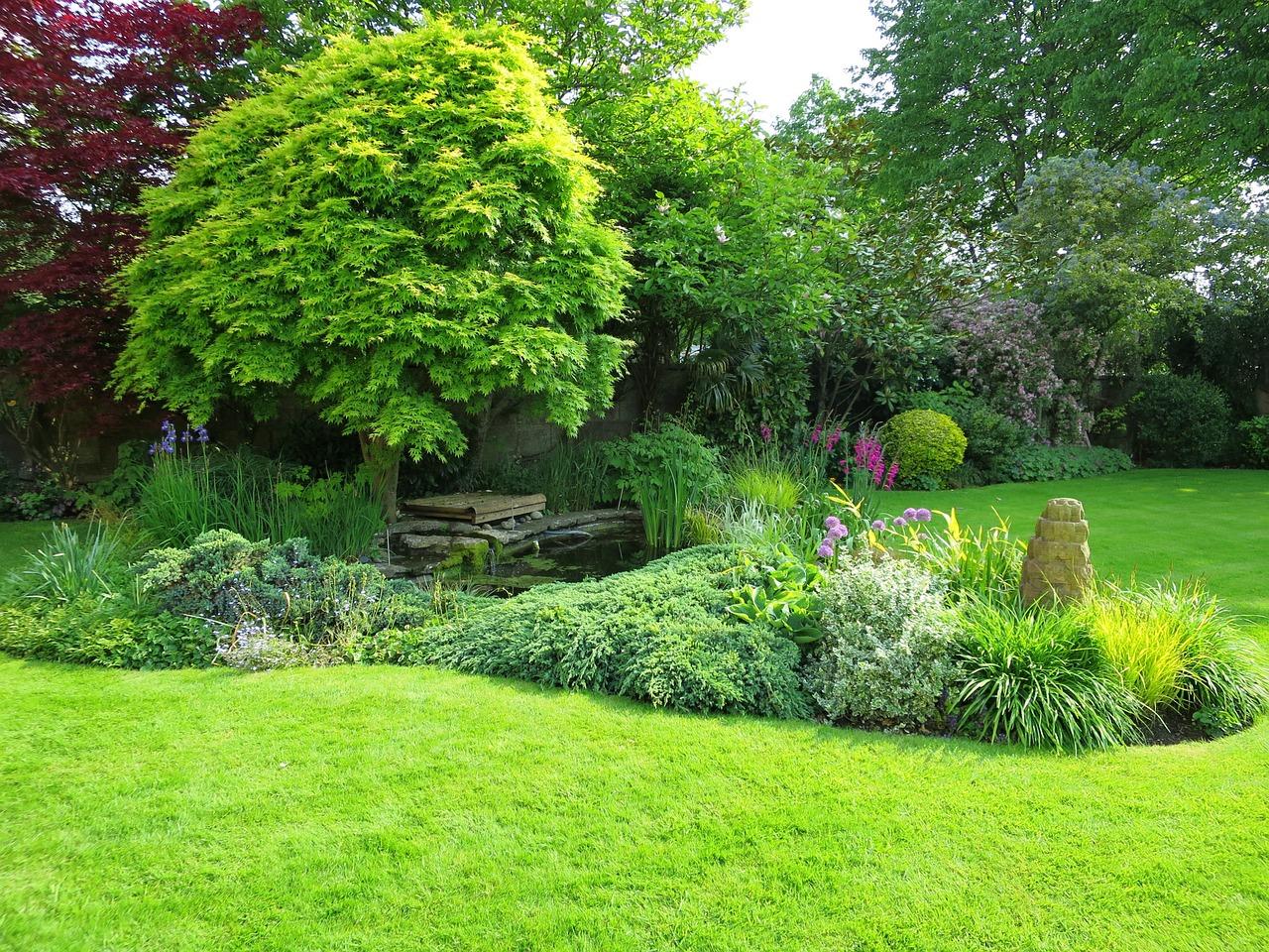 Le jardin à l'anglaise 3