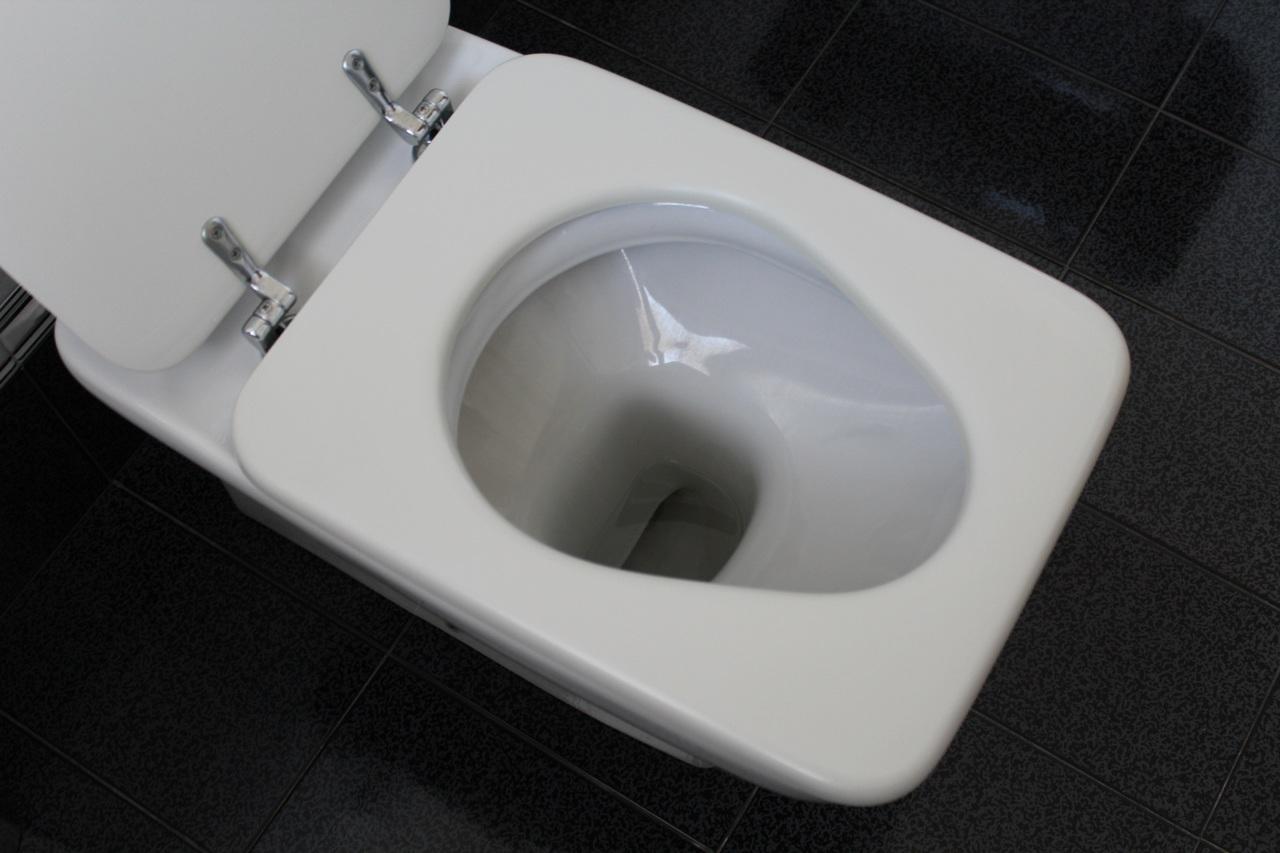 Comment choisir ses toilettes? 2