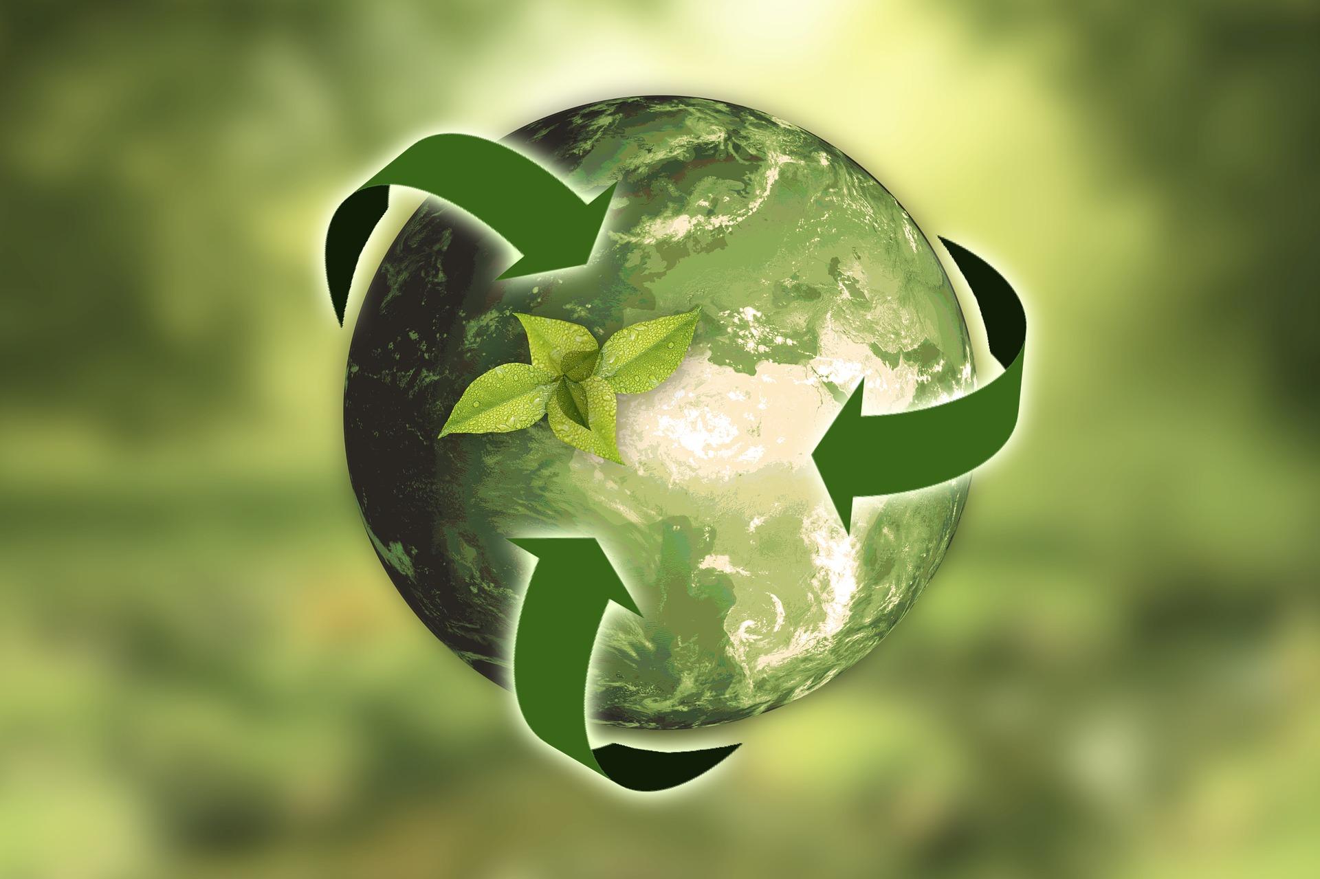 Nettoyer sa maison grâce aux produits écologiques 3