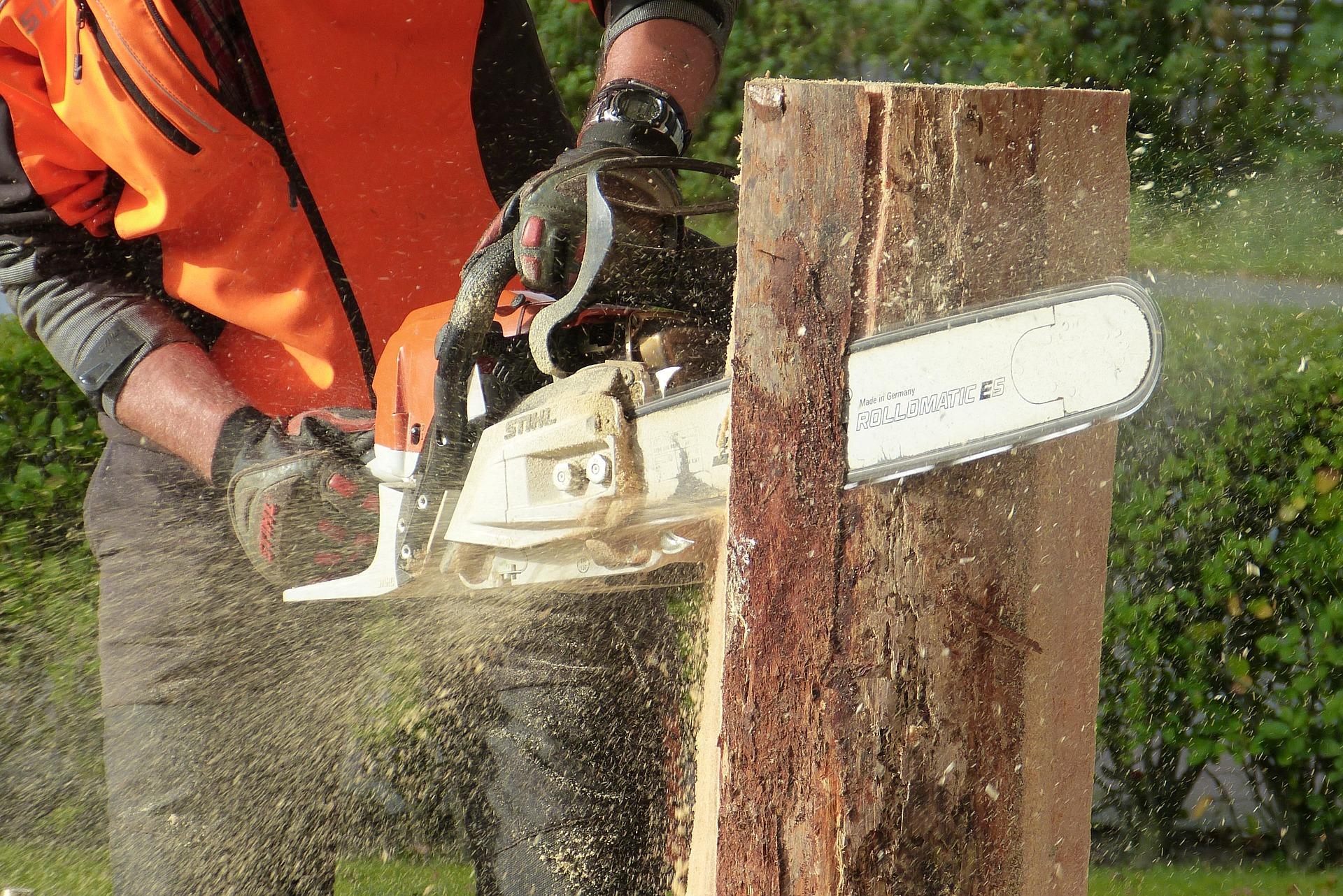 Comment choisir une tronçonneuse à bois ? 4