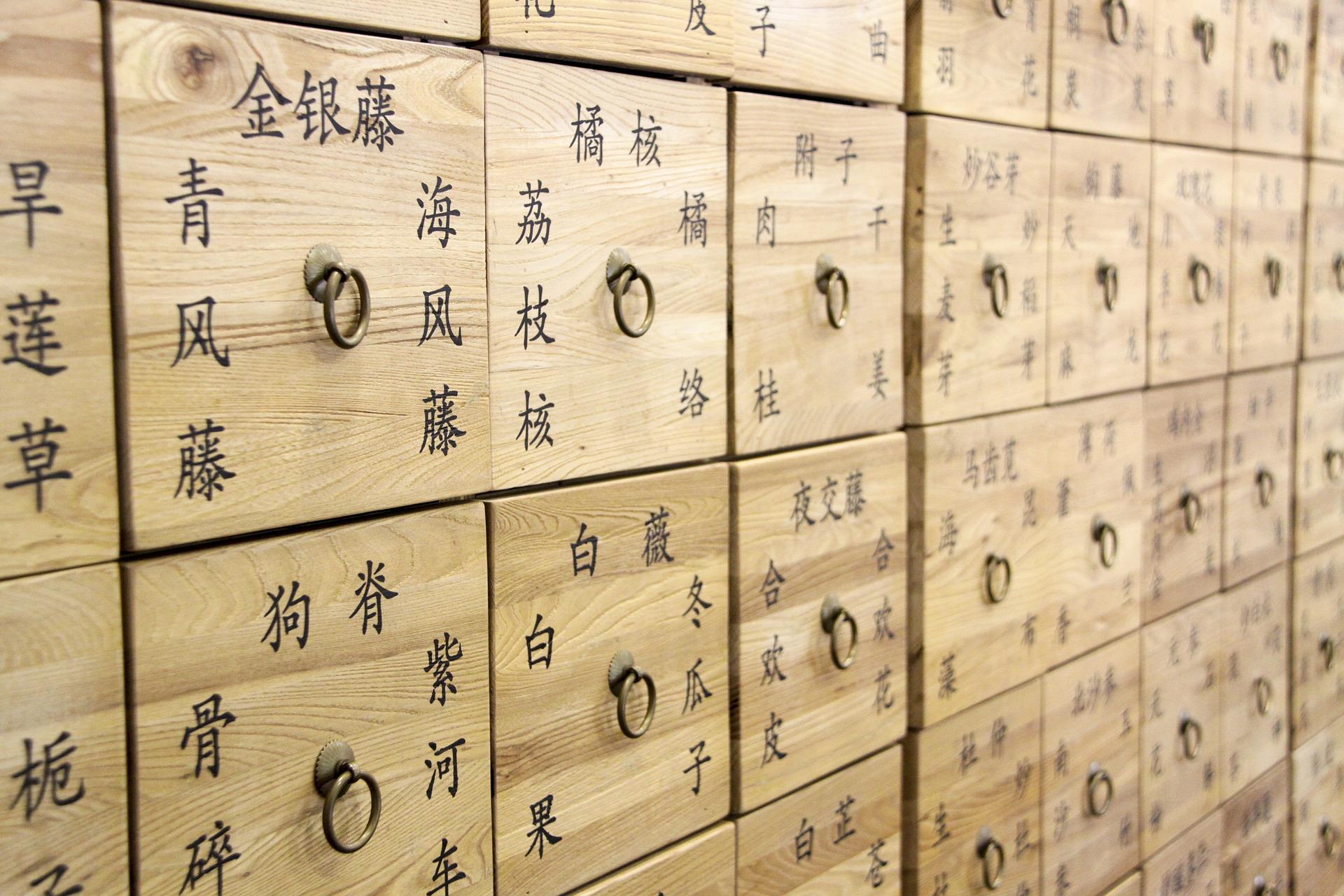 Comment se former à la médecine traditionnelle chinoise ? 2